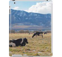 PRAIRIE COWS iPad Case/Skin