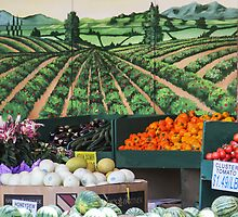 My Favorite Grocery Store by heatherfriedman