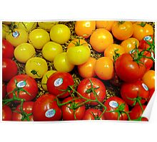 Multi Colored Tomatoes Poster