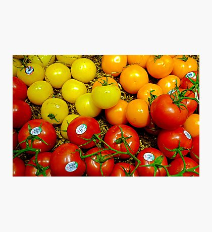 Multi Colored Tomatoes Photographic Print