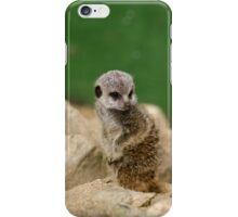 Meerkat Baby iPhone Case/Skin