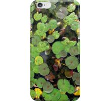 Lilipads iPhone Case/Skin