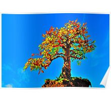 'Tree in the sky' Poster