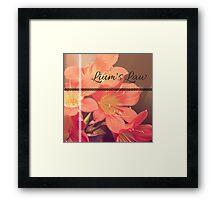 Lium's Law (Amser Studios) Framed Print
