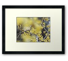 Nature by Simon Williams-Im Framed Print