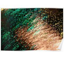 Suburb Christmas Light Series - Xmas Emerald Poster