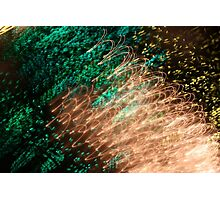 Suburb Christmas Light Series - Xmas Emerald Photographic Print
