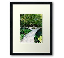wooden path Framed Print