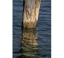 Old Piling and Reflection 1 Photographic Print