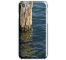 Single Old Piling 4 iPhone Case/Skin