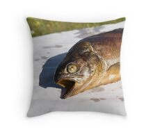 grilled trout Throw Pillow