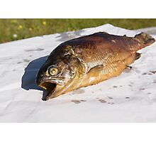 grilled trout Photographic Print