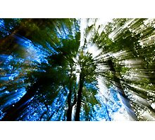 Paradise, New Zealand Photographic Print
