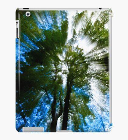 Paradise, New Zealand iPad Case/Skin