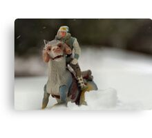 Is Hoth in Iowa?  Canvas Print