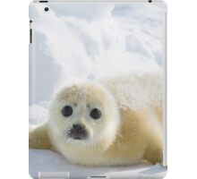 Cute Baby Seal iPad Case/Skin