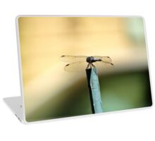 Perched Dragonfly Laptop Skin