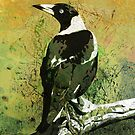 Mrs Magpie by Karyn Fendley