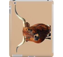 Blue Ribbon Pose  iPad Case/Skin
