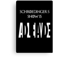 Schroedinger's Snow is Dead/Alive Canvas Print