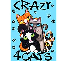 Crazy Cat Lovers Kitty Art Photographic Print