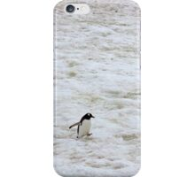 "Gentoo Penguin ~ ""It's a long walk home"" iPhone Case/Skin"