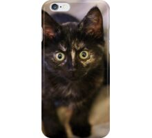 Nebula the tortie cat #3  iPhone Case/Skin