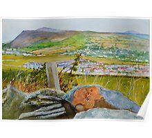 Brambles above Port Erin, Isle of Man, Irish Sea Poster
