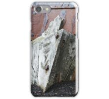 """It Rots in Rust""  iPhone Case/Skin"