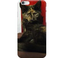 Soli the tortie cat #2 iPhone Case/Skin