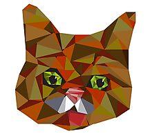Lil Bub Geometric Photographic Print