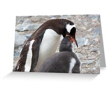 "Gentoo Penguin and Chick ~ ""Pre-packaged Krill"" Greeting Card"
