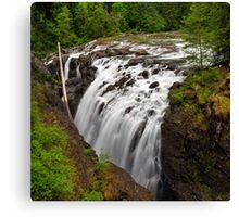 The Englishman River Falls in Spring Canvas Print