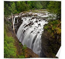 The Englishman River Falls in Spring Poster