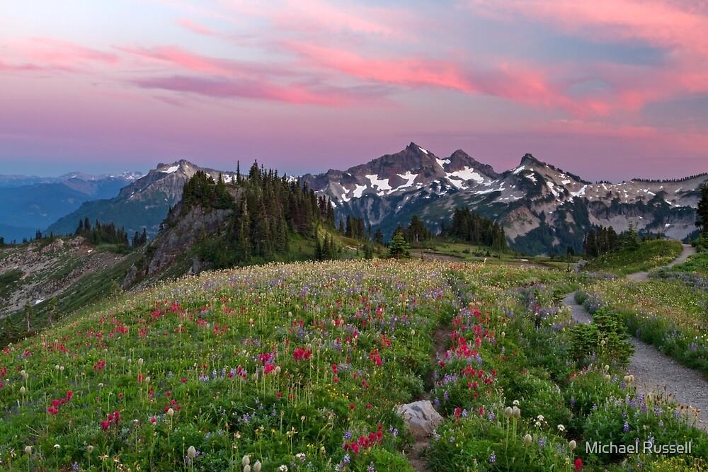 Mazama Ridge Wildflowers by Michael Russell