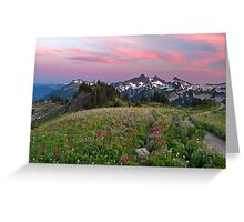 Mazama Ridge Wildflowers Greeting Card