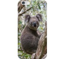 Backyard Blinky Bill iPhone Case/Skin