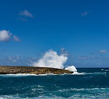 Pacific Postcard - Famous Laie Point, Hawaii, USA by Georgia Mizuleva
