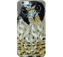Peregrine Falcons 3 & 4 - Growing Up iPhone Case/Skin