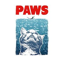 Crazy Cat Meow Paws Jaws Photographic Print