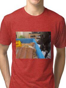 Hamster and dog  Tri-blend T-Shirt