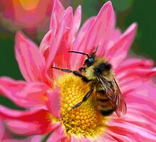 Bumble Bee On Fantasy Flower by SmilinEyes