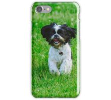 Running dog iPhone Case/Skin