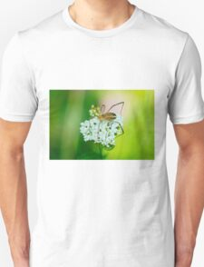 Insect on a white flower macro Unisex T-Shirt