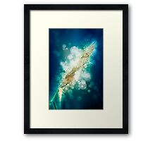 digitally manipulated flowering Reeds growing on a river bank Framed Print