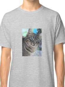 Inquisitive Tabby Cat With Green Eyes Classic T-Shirt