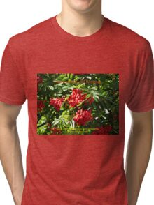 Red Rowan Berries Christmas Card Tri-blend T-Shirt