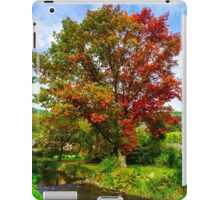 Vivid colors of autumnal nature, red oak on the river, french countryside iPad Case/Skin