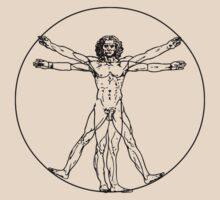 Vitruvian man vector drawing by aapshop