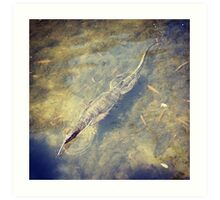 Monitor Lizard in the Wetland Reserve Art Print